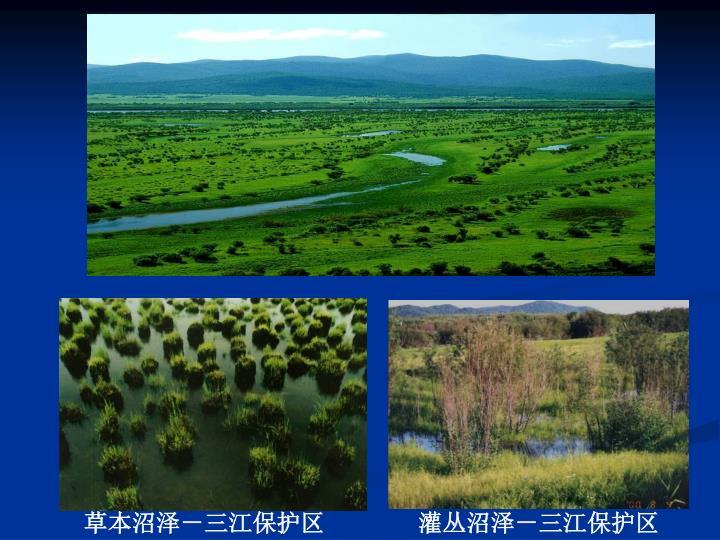 草本沼泽-三江保护区