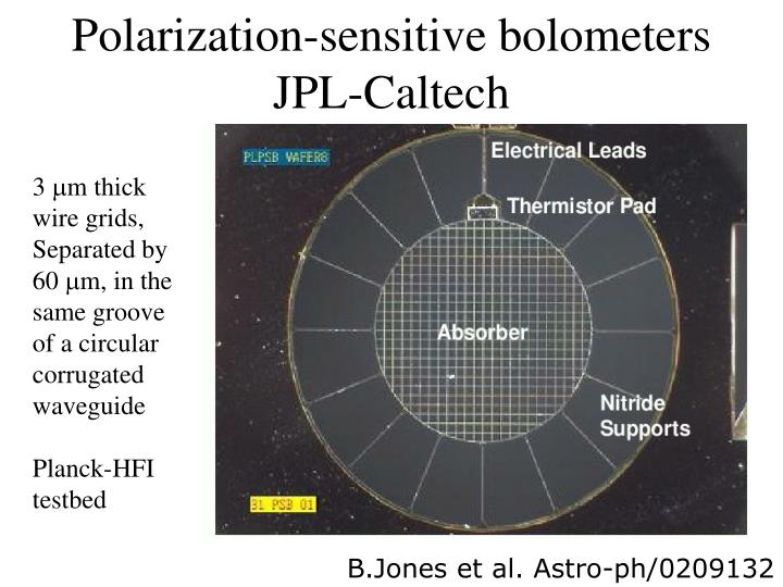 Polarization-sensitive bolometers
