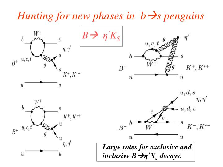 Hunting for new phases in  b