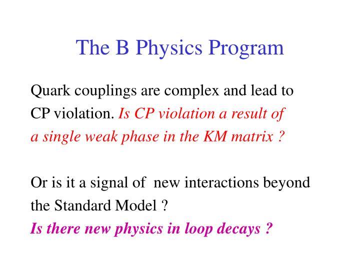 The b physics program