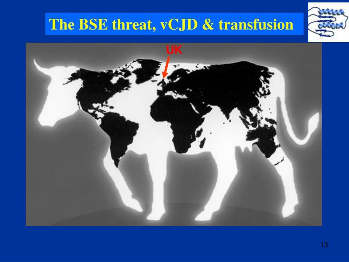 The BSE threat, vCJD & transfusion