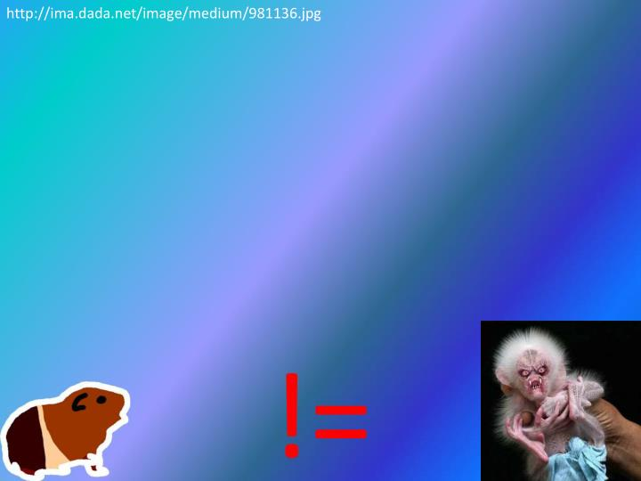 http://ima.dada.net/image/medium/981136.jpg