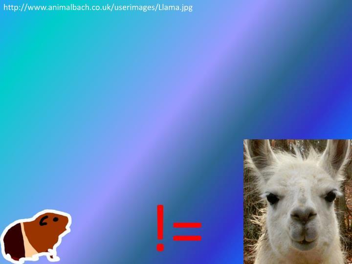 http://www.animalbach.co.uk/userimages/Llama.jpg