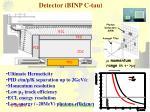 detector binp c tau