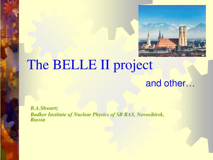 the belle ii project and other n.