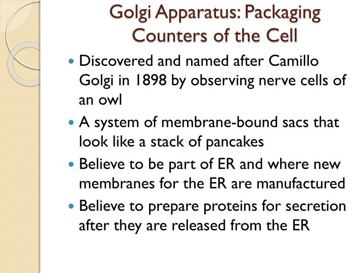 Golgi Apparatus: Packaging Counters of the Cell