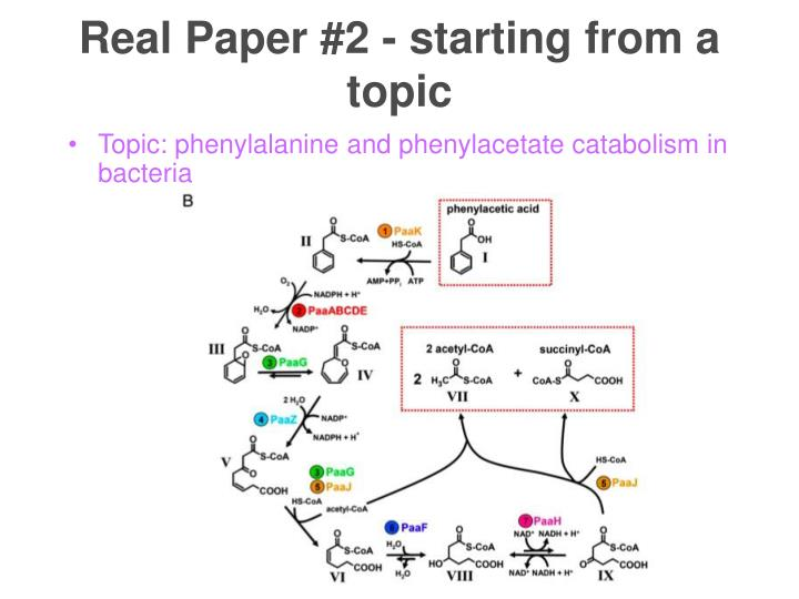 Real Paper #2 - starting from a topic