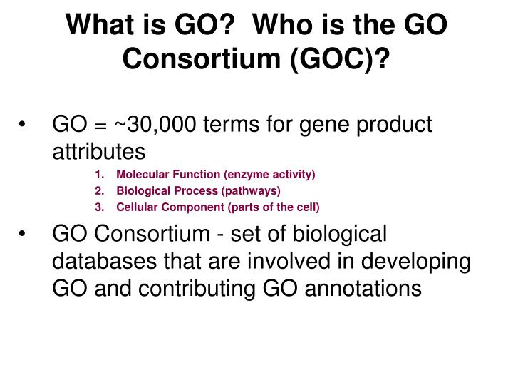 What is GO?  Who is the GO Consortium (GOC)?