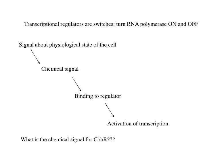 Chemical signal