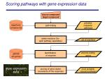 scoring pathways with gene expression data