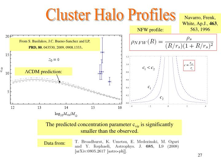 Cluster Halo Profiles