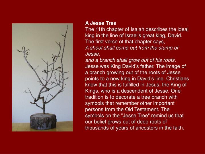 A Jesse Tree