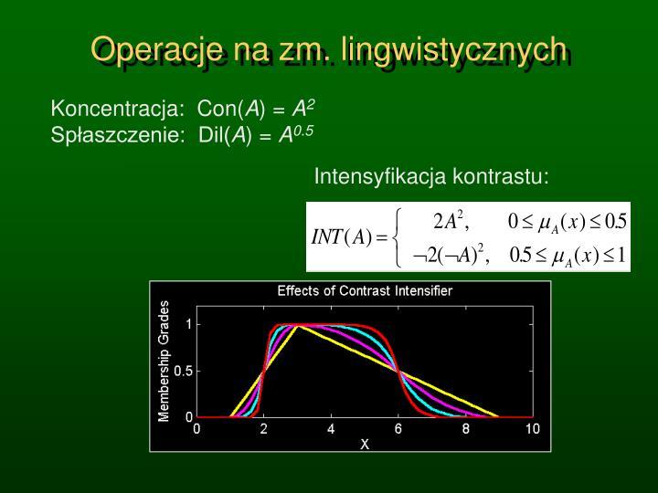 Operacje na zm. lingwistycznych