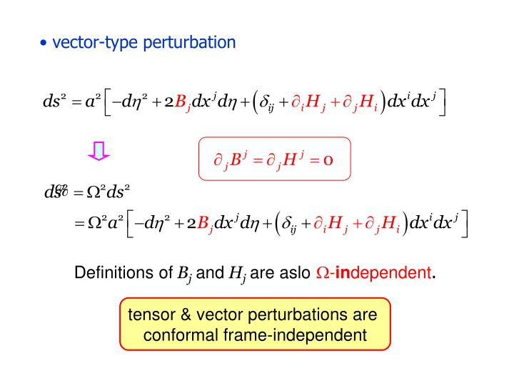 vector-type perturbation