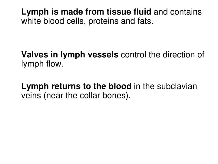 Lymph is made from tissue fluid