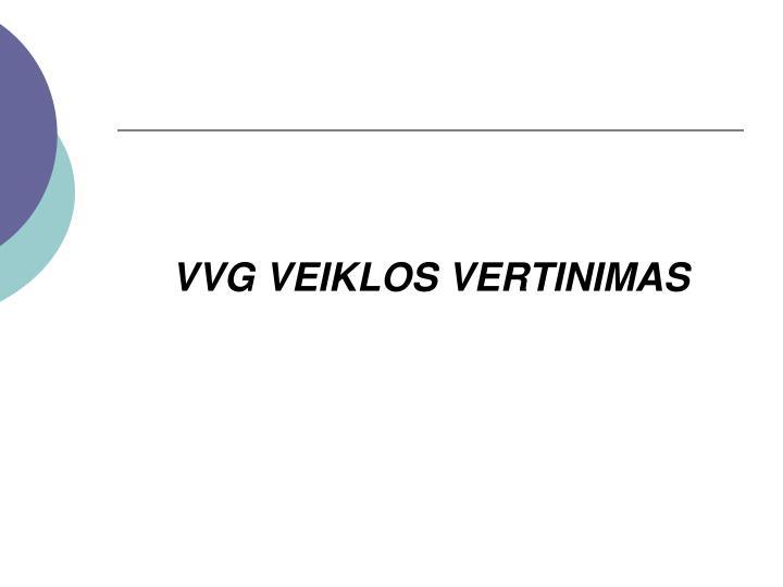 VVG VEIKLOS VERTINIMAS