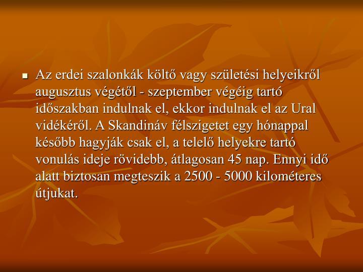 Az erdei szalonkák költő vagy születési helyeikről augusztus végétől - szeptember végéig tartó időszakban indulnak el, ekkor indulnak el az Ural vidékéről. A Skandináv félszigetet egy hónappal később hagyják csak el, a telelő helyekre tartó vonulás ideje rövidebb, átlagosan 45 nap. Ennyi idő alatt biztosan megteszik a 2500 - 5000 kilométeres útjukat.