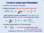 curvature scalar type perturbation