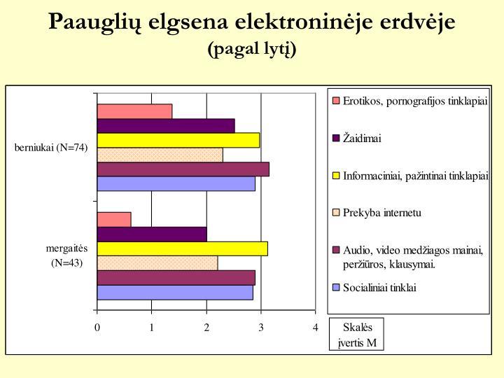 Paauglių elgsena elektroninėje erdvėje