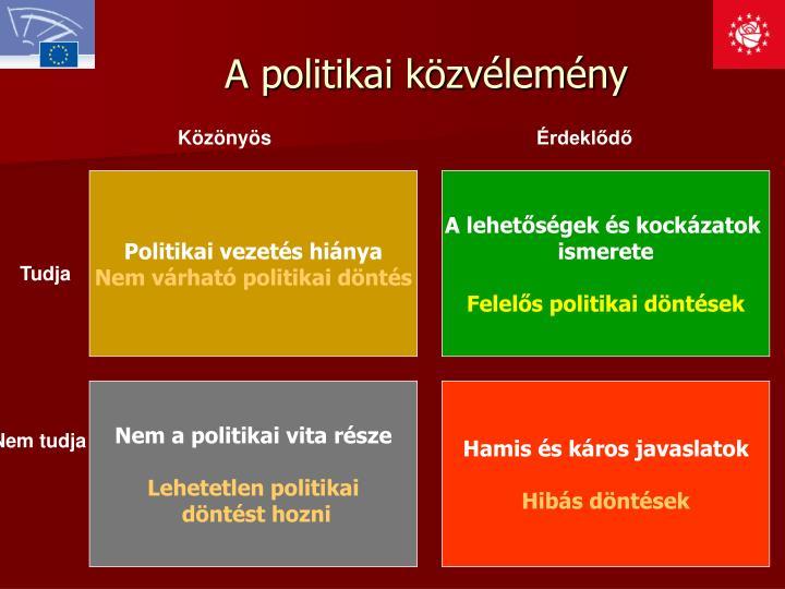 A politikai közvélemény