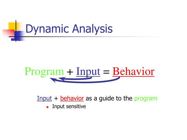 Dynamic Analysis