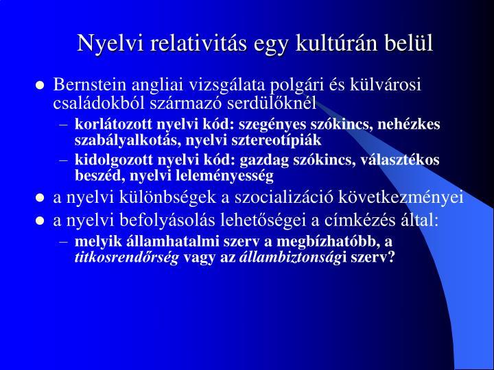 Nyelvi relativitás egy kultúrán belül