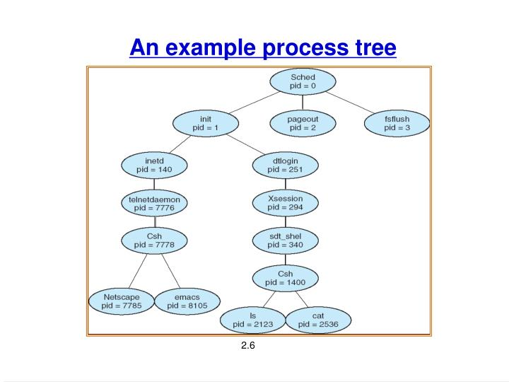 An example process tree