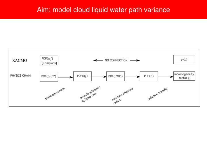 Aim: model cloud liquid water path variance