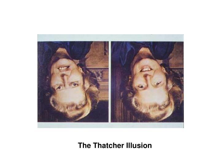 The Thatcher Illusion