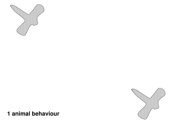 1 animal behaviour