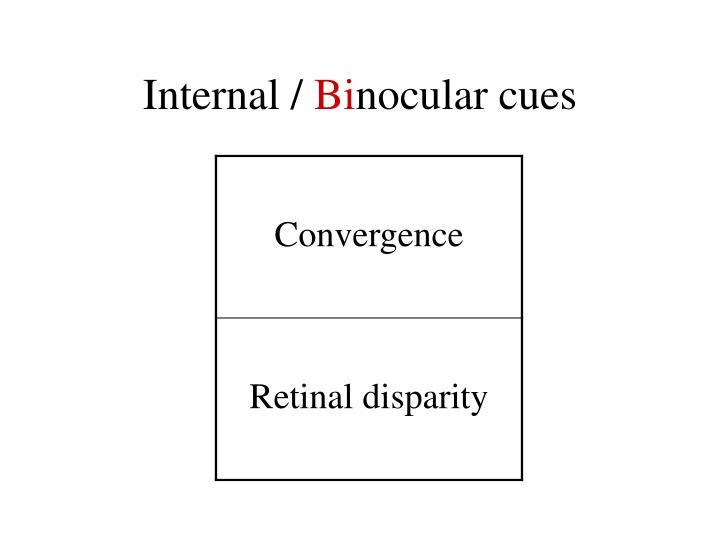 Internal /