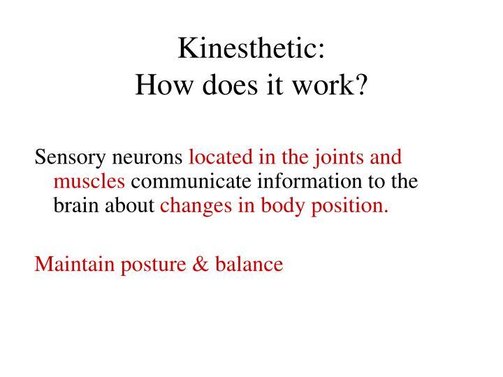 Kinesthetic: