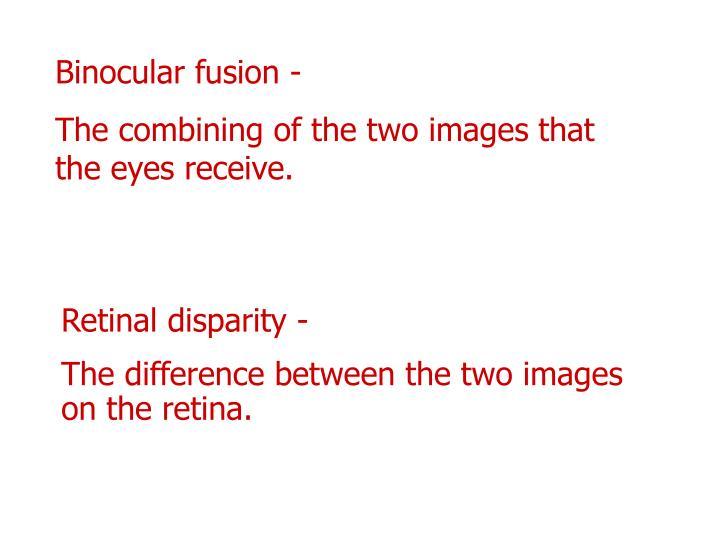 Binocular fusion -