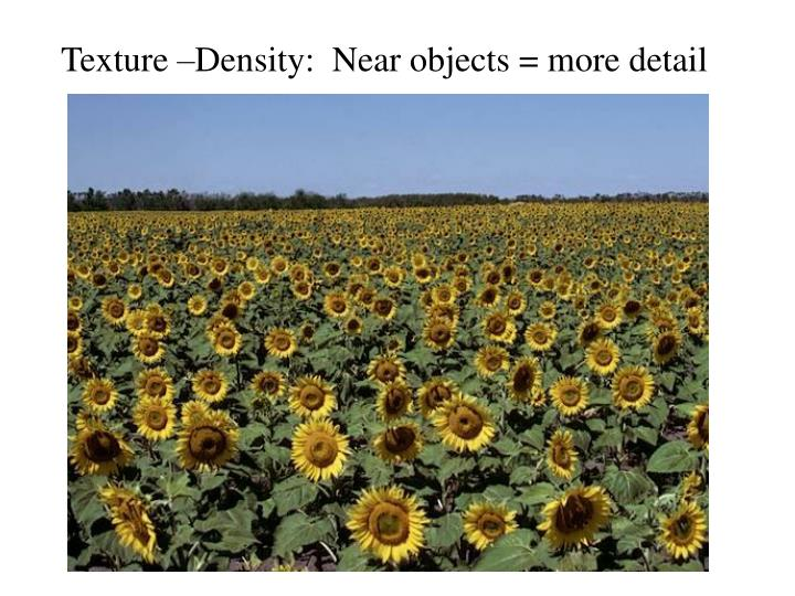 Texture –Density:  Near objects = more detail