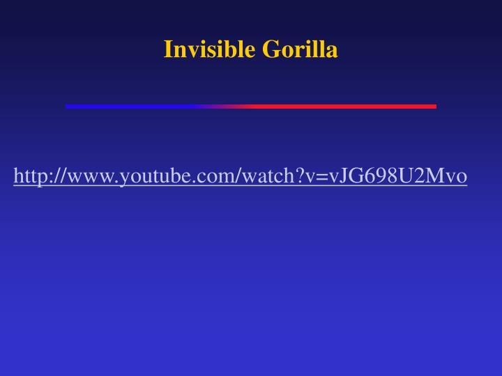 Invisible Gorilla