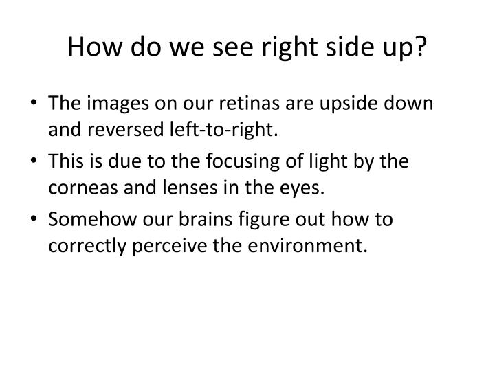 How do we see right side up