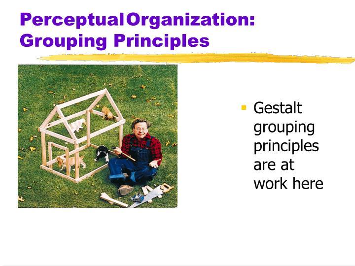 PerceptualOrganization: Grouping Principles