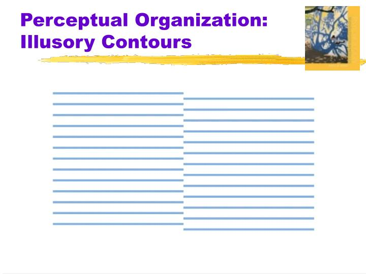 Perceptual Organization:  Illusory Contours