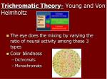 trichromatic theory young and von helmholtz