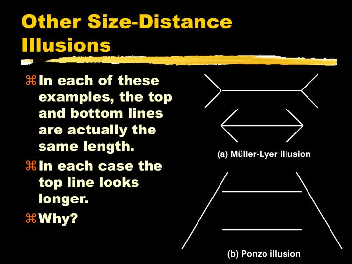 (a) Müller-Lyer illusion