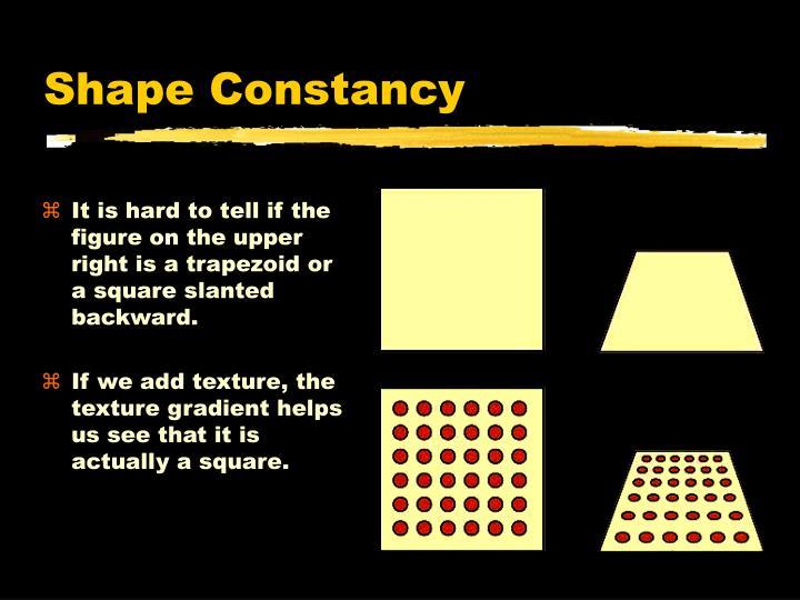 Shape Constancy