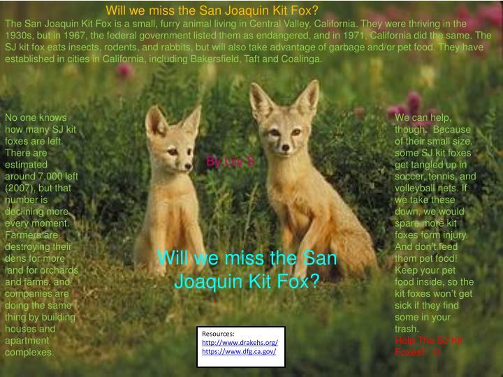 Will we miss the San Joaquin Kit Fox?