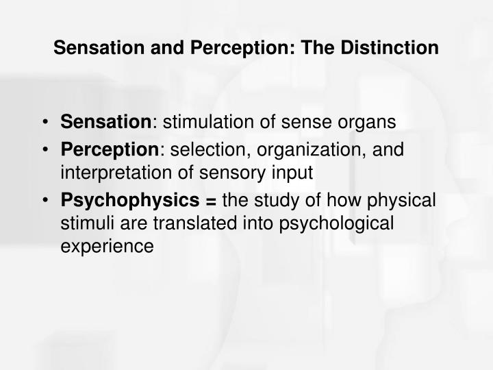 Sensation and perception the distinction