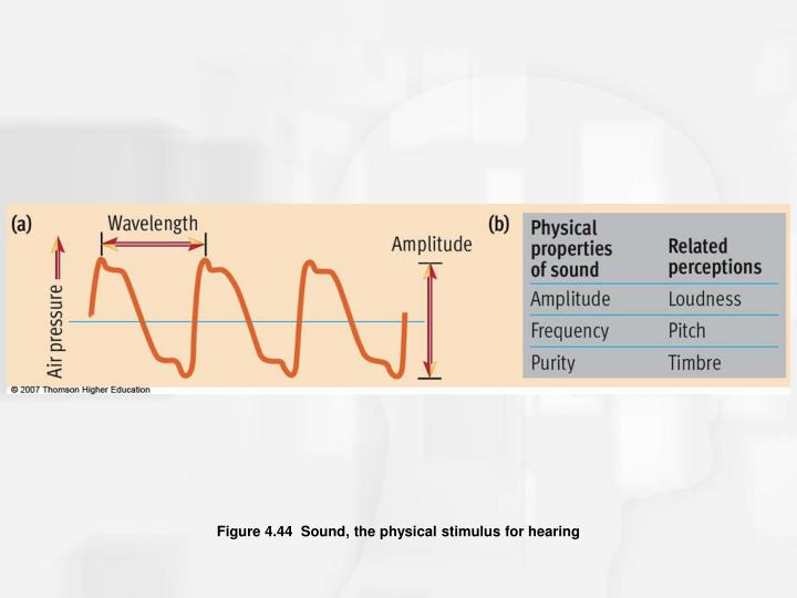 Figure 4.44  Sound, the physical stimulus for hearing