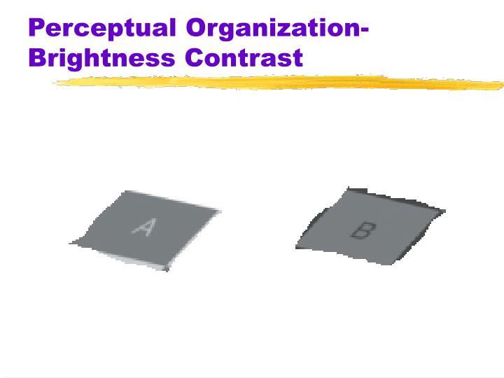 Perceptual Organization-Brightness Contrast