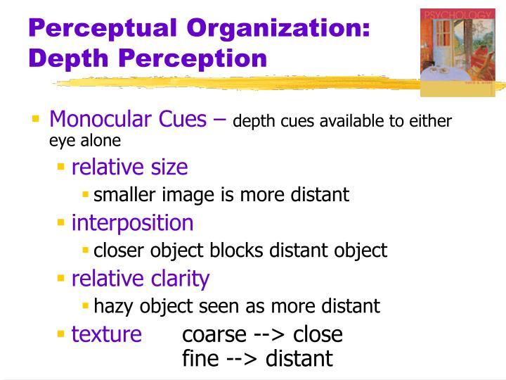 Perceptual organization depth perception1