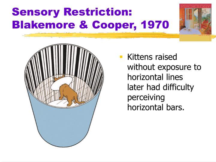 Sensory Restriction: