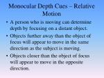 monocular depth cues relative motion