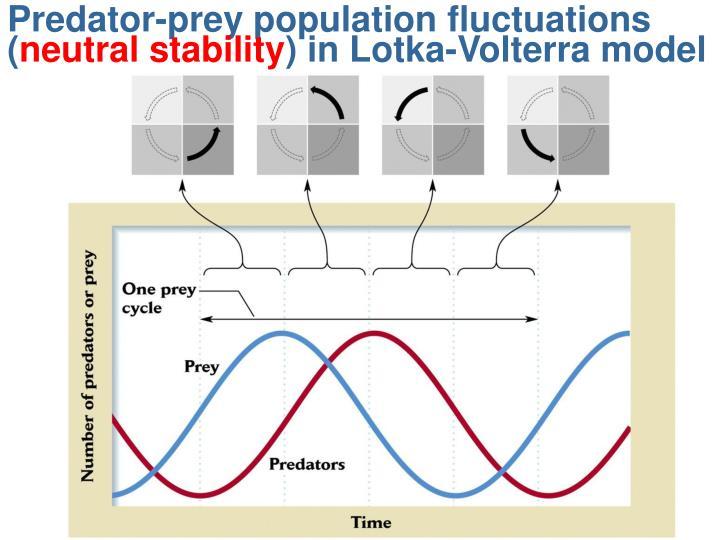 Predator-prey population fluctuations (