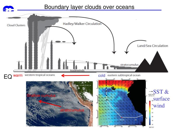 Boundary layer clouds over oceans